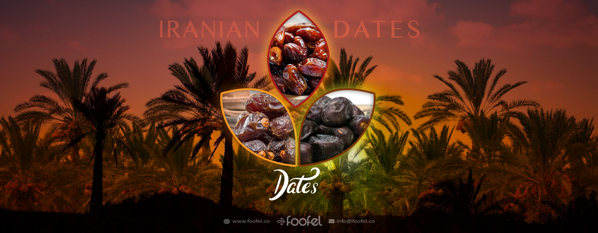 iranian dates،foofel