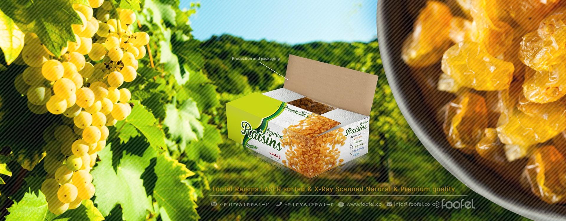iranian raisins،foofel