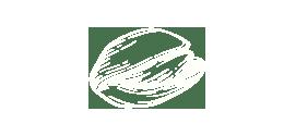 icon pistachios